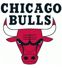Camiseta Chicago Bulls 2017